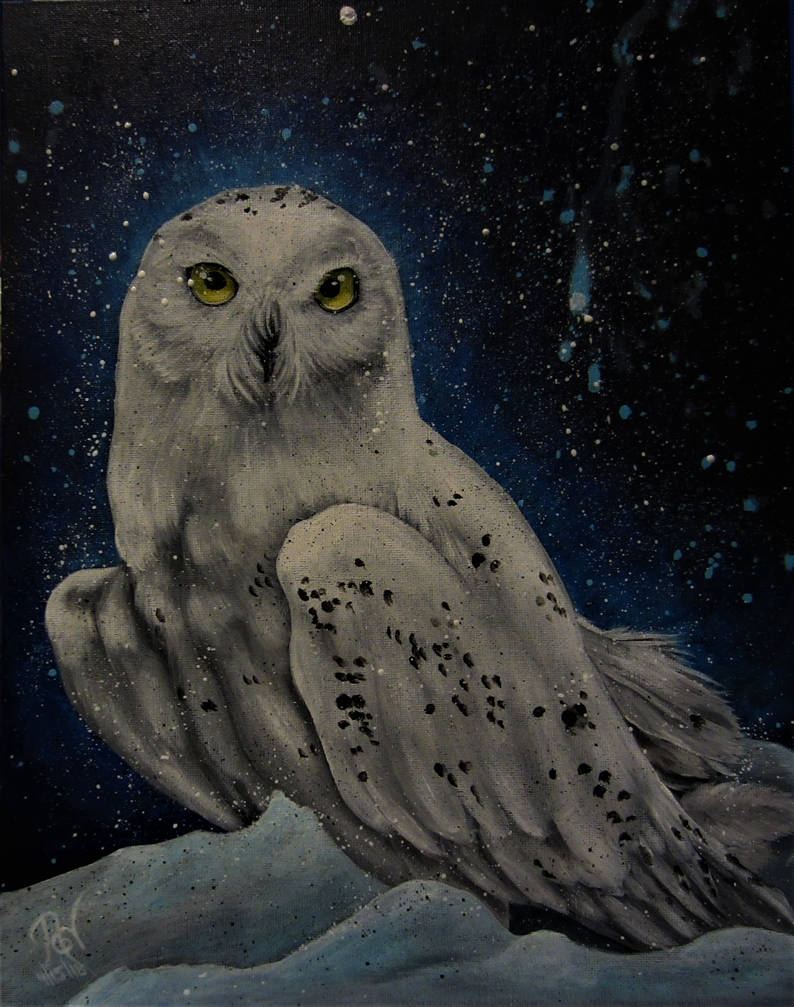 Snowy Owl by NicoleHansche