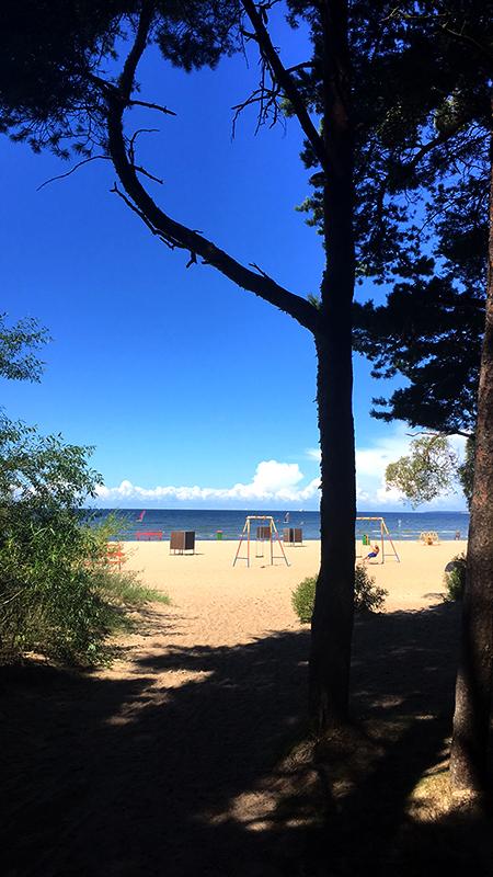 Delighted coast by Justware