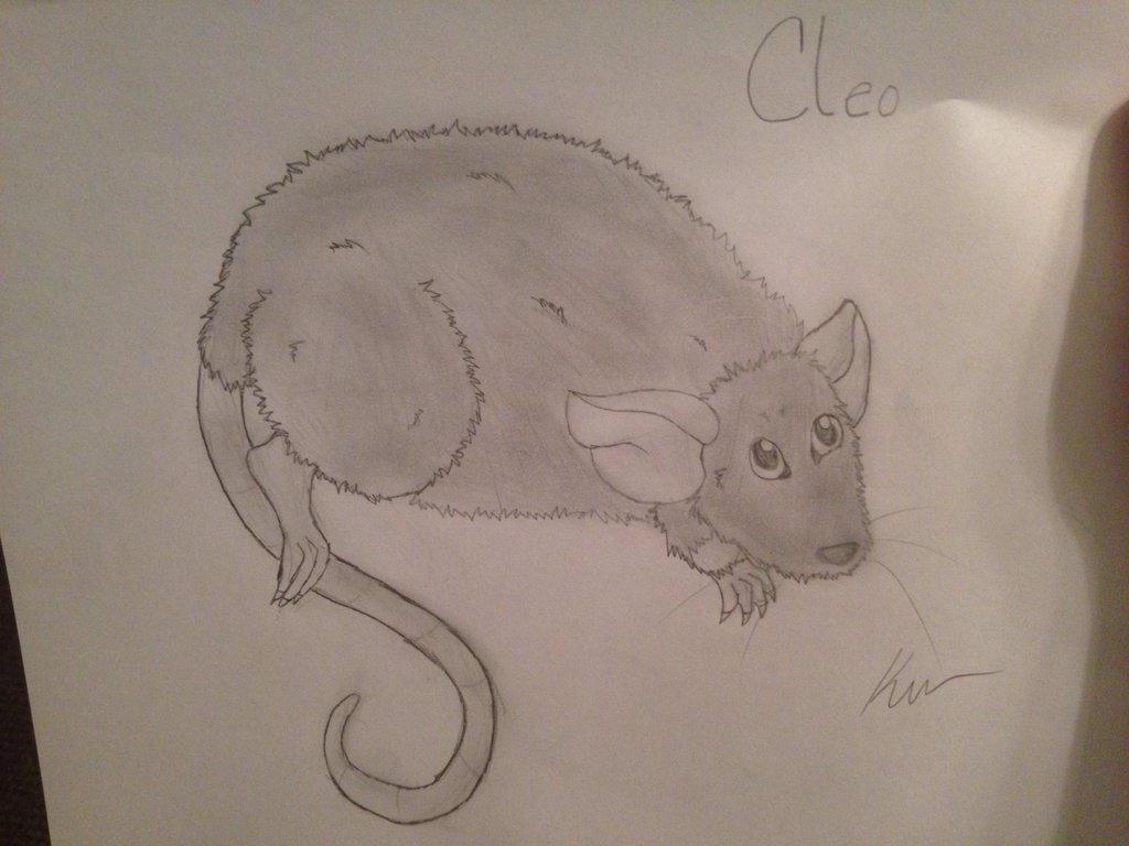 Cleo by Izuri-Chan93