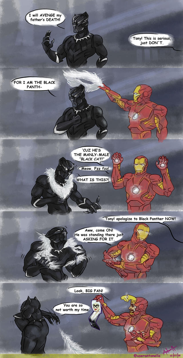 Black Panther is Misunderstood by userantonella