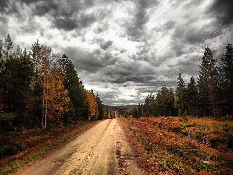 Road by FinJambo