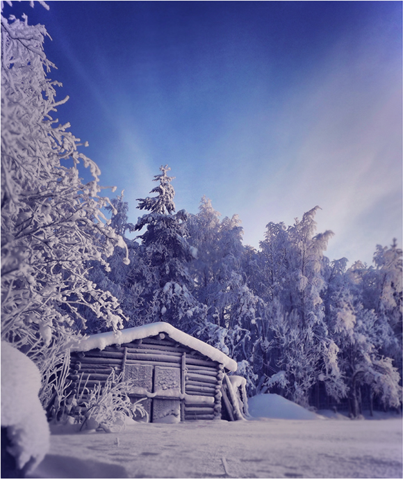 Dreamland? by FinJambo