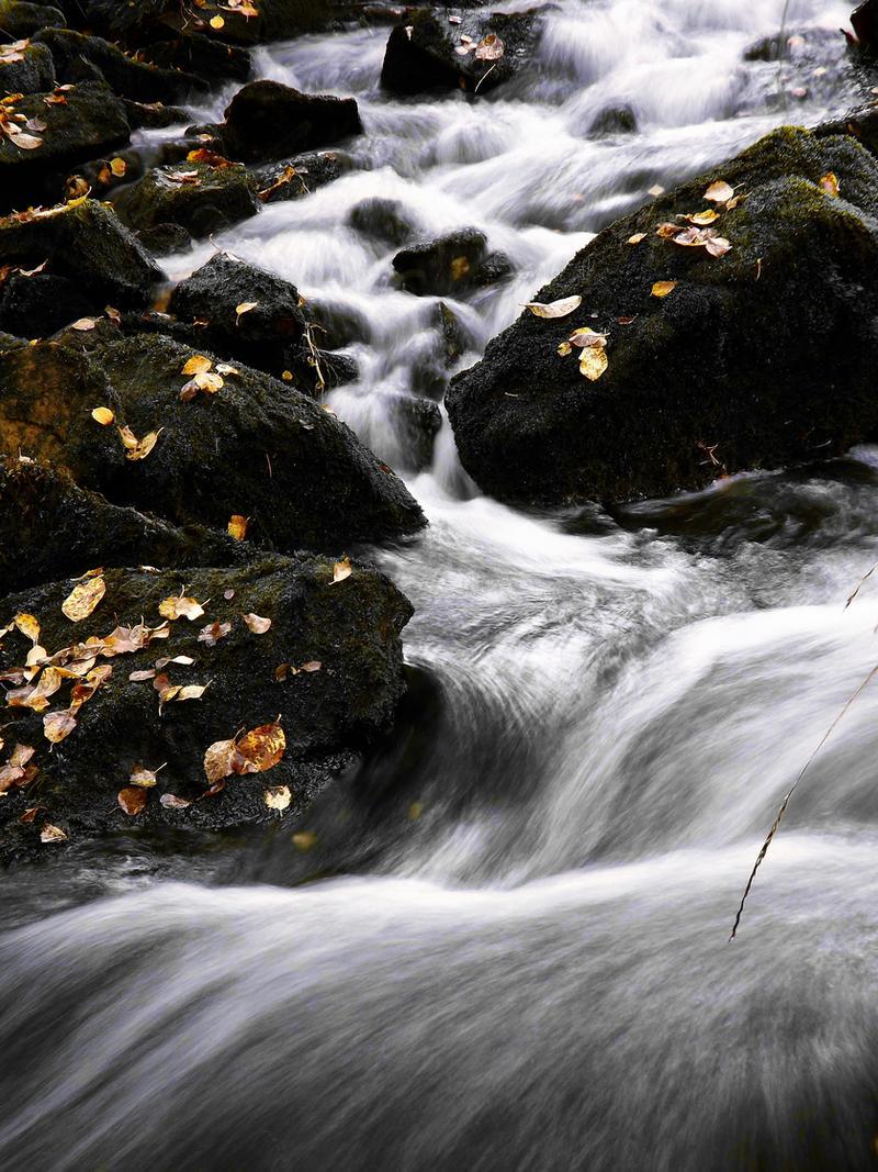 Flow 1. by FinJambo