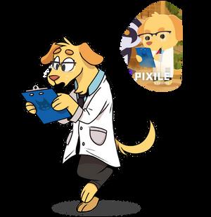 Dr. Dogna