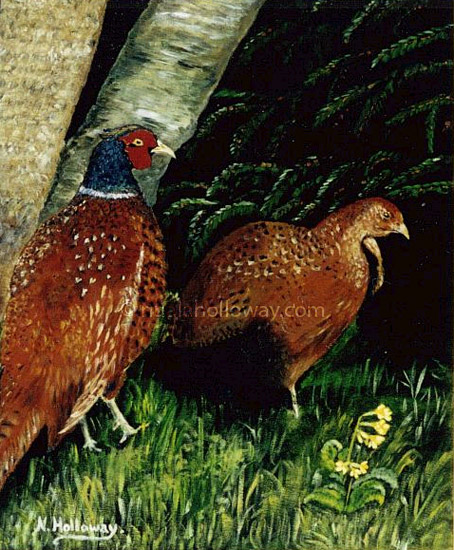 Mating Pheasants by NualaHolloway