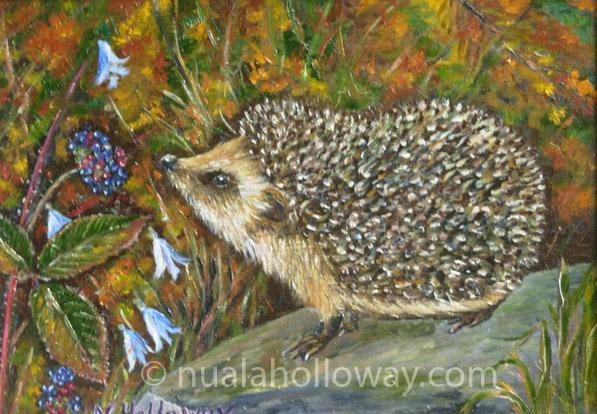 Hedgehog by NualaHolloway