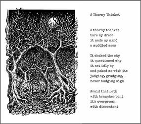 A Thorny Thicket
