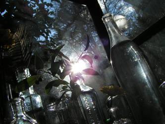 Glass by fateforward