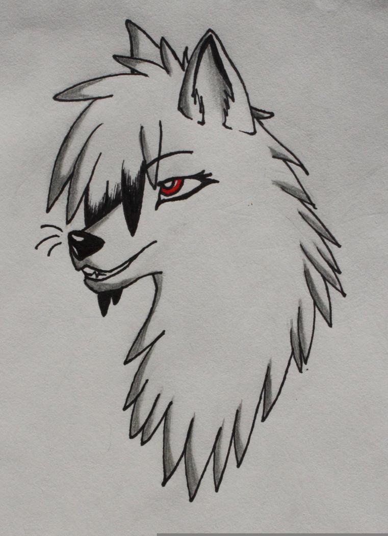 Anime Wolf Head Drawings Anime Wolf Head Drawings