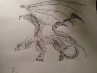Young Dragon pencil drawing by dragonartist14