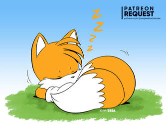 Tails Sleeping