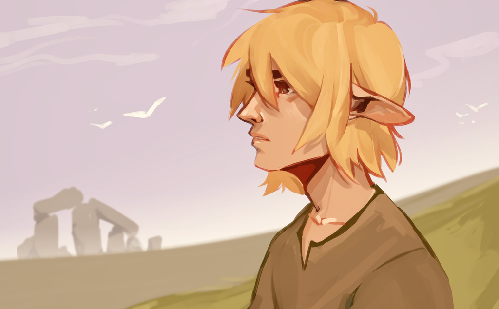 Link by R0BUTT
