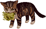 Cat pixel 3 by R0BUTT