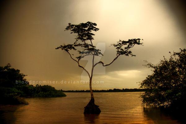 The Tree by TwiggyTeeluck