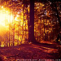 Radiant Heat by TwiggyTeeluck