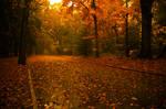 Route d'automne by TwiggyTeeluck