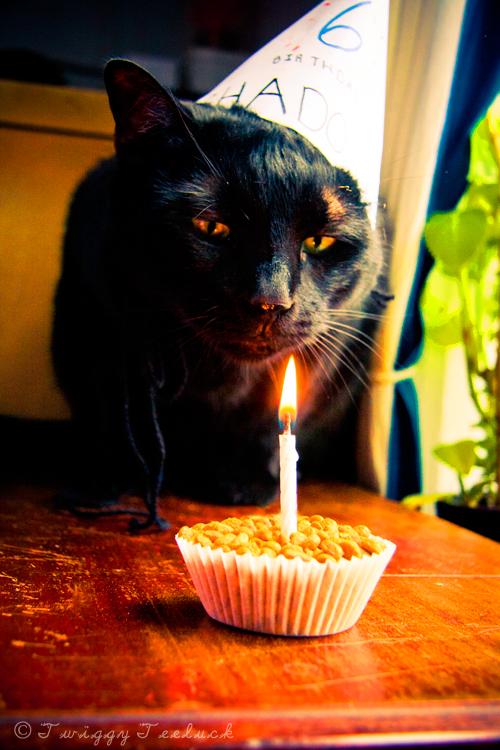 Happy 6th Birthday by TwiggyTeeluck