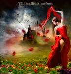 Dance width poppies by Alimera