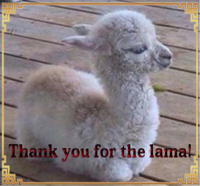 Thank A7 by Alimera
