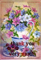 Thank A3 by Alimera