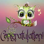 Congratulation Stock Image