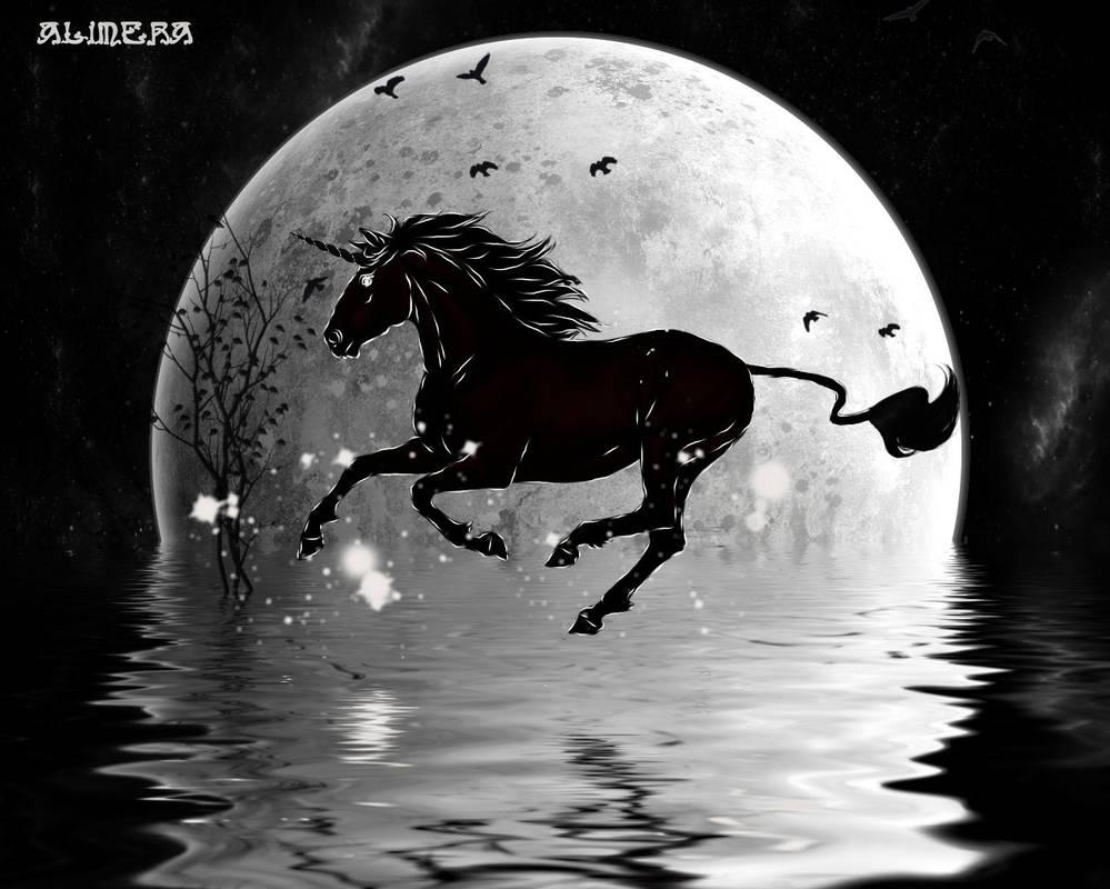 Unicorne by Alimera