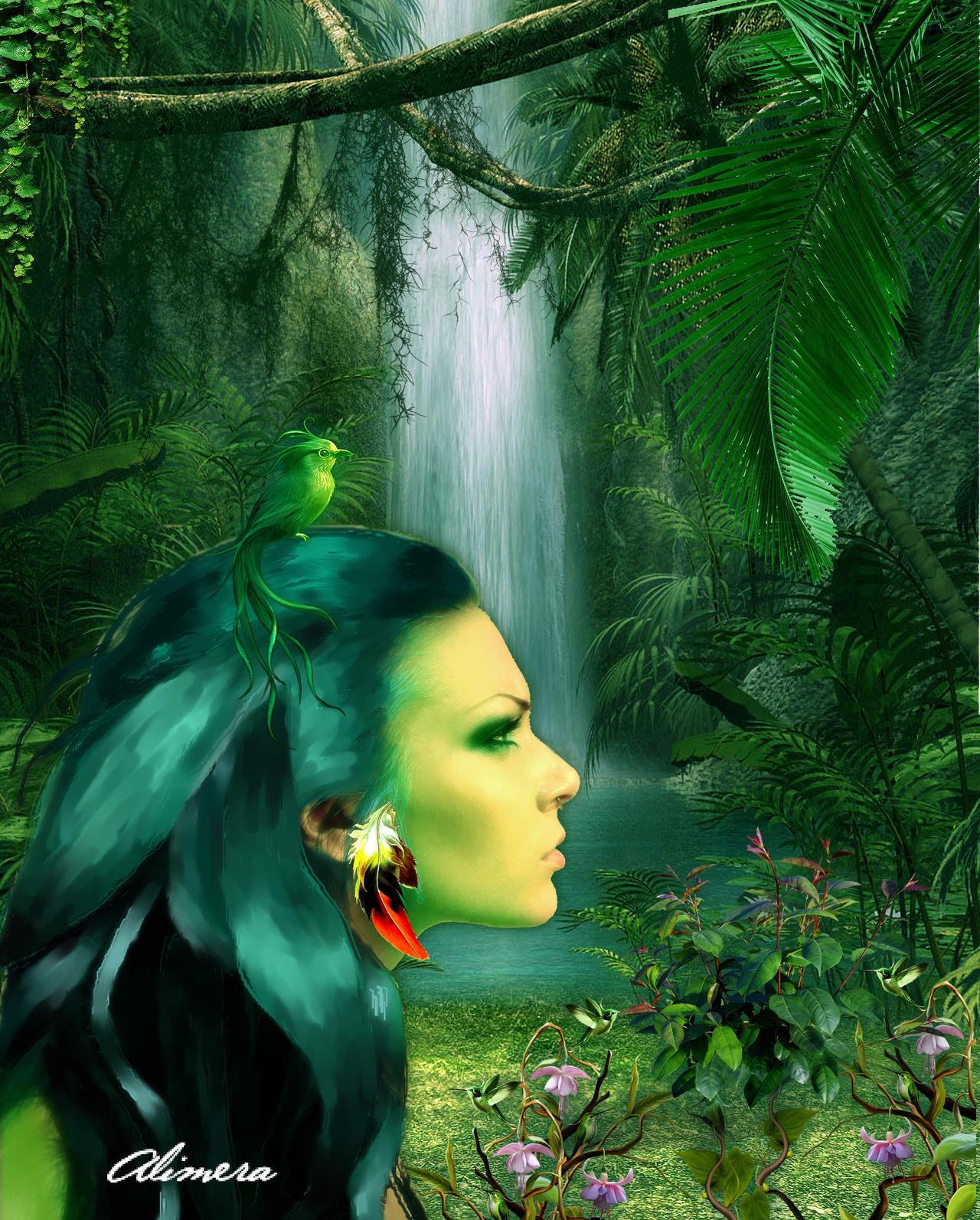 Miracle Jungle