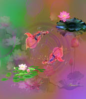 Fish and lotus by Alimera