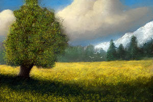 Mountain Meadow by ghost549