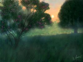 <b>Morning Mist</b><br><i>ghost549</i>