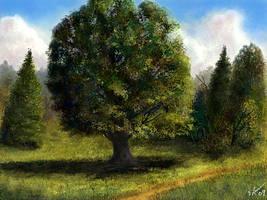 <b>Tree Study</b><br><i>ghost549</i>