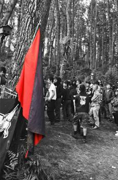 Anarcho-syndicalism Flag