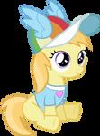 Rainbow Dash Fan Club Noi
