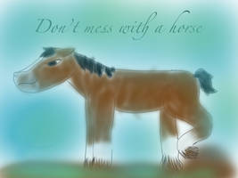 SKETCH A HORSE by codytheanimale