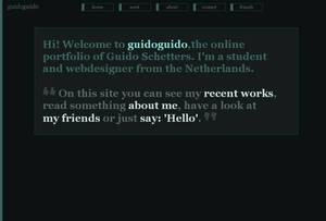 Portfolio 2008 -  Online