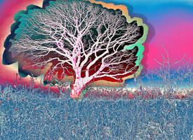 Field of Glowing Pastel by Star-Grace