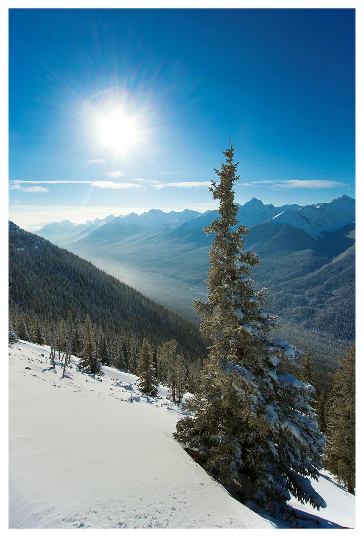 Sulphur Mountain Sunshine by banjoeskimo
