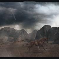 dox by opaque-studios