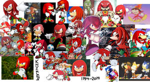 The Year of Knuckles 2014
