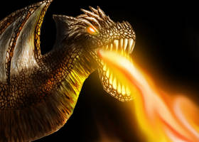 Dragon Fire by BlueHedgedarkAttack