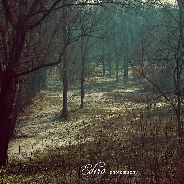 Magie d'Inverno by phoenixgraphixstudio