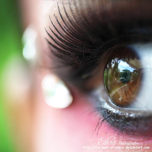 The apple of my eyes by phoenixgraphixstudio