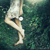 . . . take my time . . . by phoenixgraphixstudio