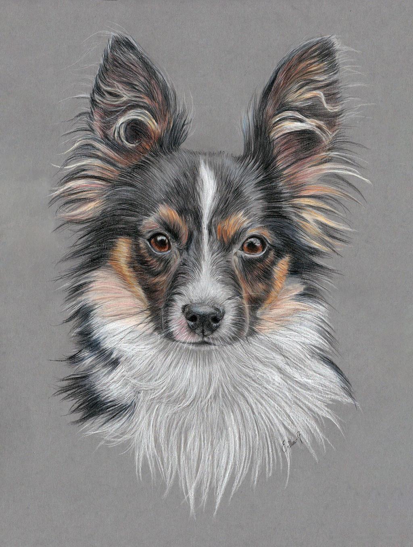 Dog portrait by Erikor