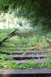 Tracks Stock