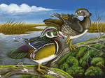 KS Federal Jr. Duck Stamp 2003 by Jaybaby11