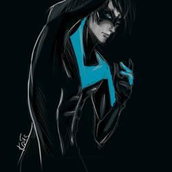 Nightwing by KaitoEinsam