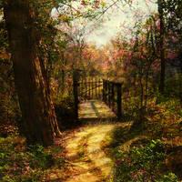 Secret Garden by Cocodrillo