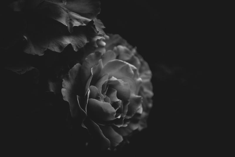 ..: Mars 2017 - IV :.. by Mademoiselle-P