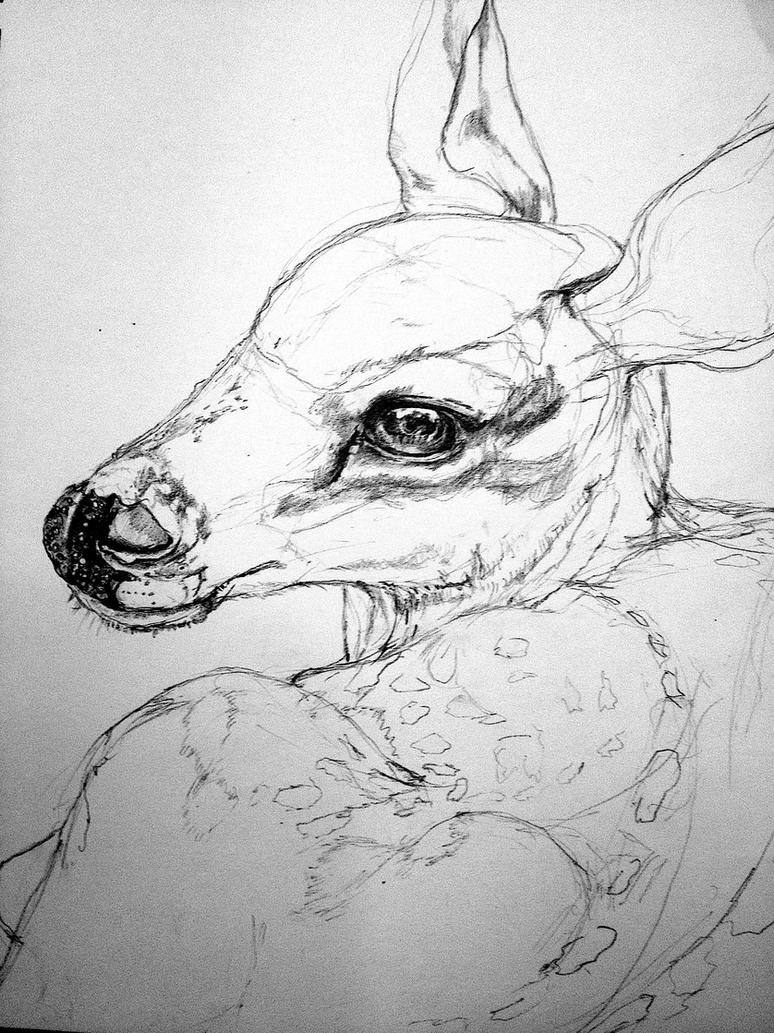 Fawn drawing WIP 2 by lamelobo